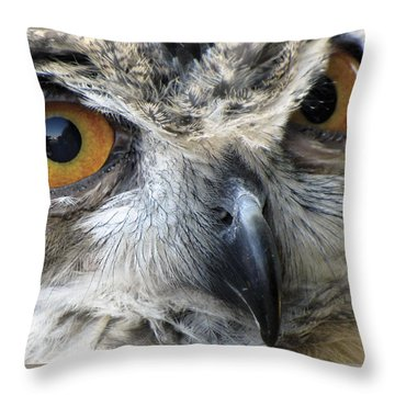 Who Throw Pillow by Bob Slitzan