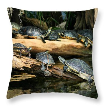 Who Called This Meeting Anyway Throw Pillow