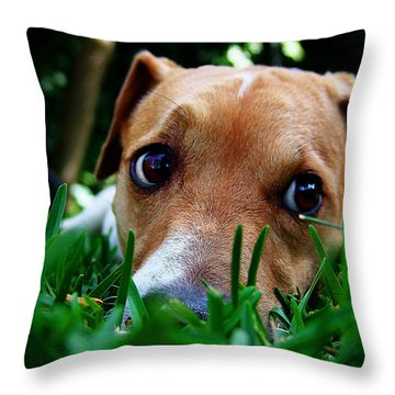 Who Dug This Hole In My Garden? Throw Pillow by Alessandro Della Pietra