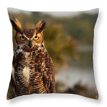 Who Goes There Throw Pillow by Mary Lou Chmura
