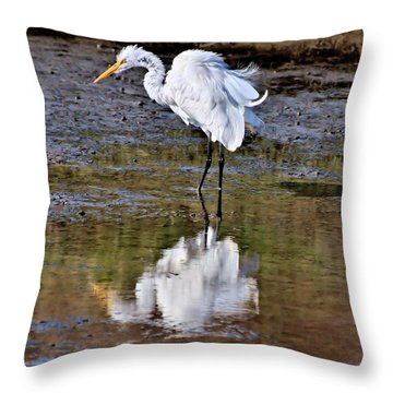 Throw Pillow featuring the photograph Who Ruffled Your Feathers? by Bob Wall