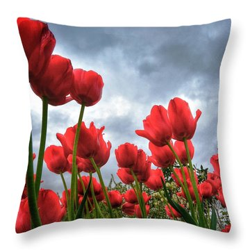 Whole Lotta Red Throw Pillow