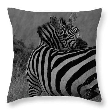 Who's There... Throw Pillow by Ramabhadran Thirupattur