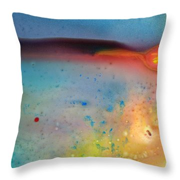 WHY Throw Pillow by Christine Ricker Brandt