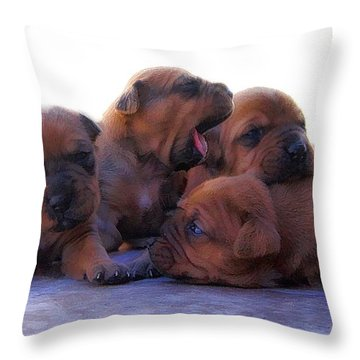 Why Do I Always Have To Be The Pillow? Throw Pillow