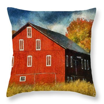Why Do They Paint Barns Red? Throw Pillow by Lois Bryan