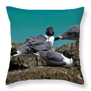 Throw Pillow featuring the photograph Why You Looking? by Robert L Jackson