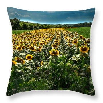 Wi Lakota Throw Pillow