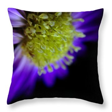 Wicked Lovely Throw Pillow by Susan Maxwell Schmidt