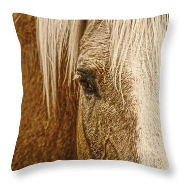 Wickenburg's Palomino Gold Throw Pillow