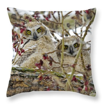 Wide-eyed Wonders Throw Pillow