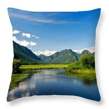 Widgeon Valley Throw Pillow