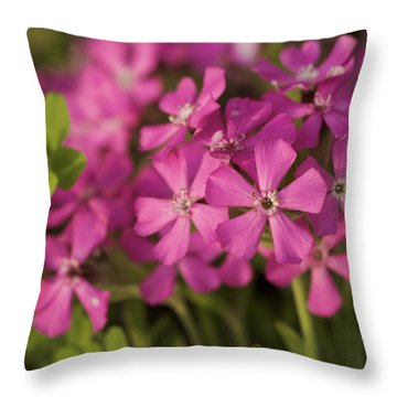 Throw Pillow featuring the photograph Wild About Pink - Pink Wildflower Art Print by Jane Eleanor Nicholas