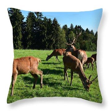 Wild Am Waldrand Throw Pillow