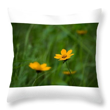 Wild And Free Throw Pillow by Shelby  Young