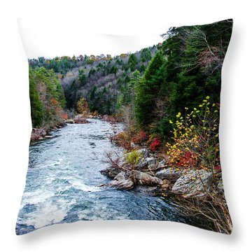 Wild And Scenic Obed River Throw Pillow