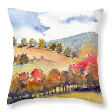 Wild And Wonderful Throw Pillow by Katherine Miller