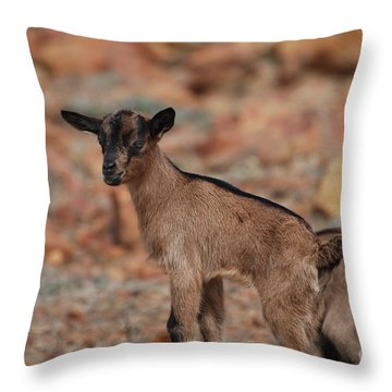 Wild Baby Goat Throw Pillow by DejaVu Designs
