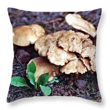 Throw Pillow featuring the photograph Wild Chicken Mushrooms by Juls Adams