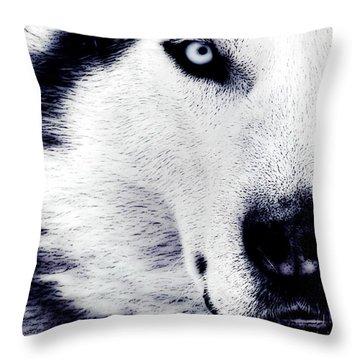 Wild Eyes Throw Pillow by VRL Art