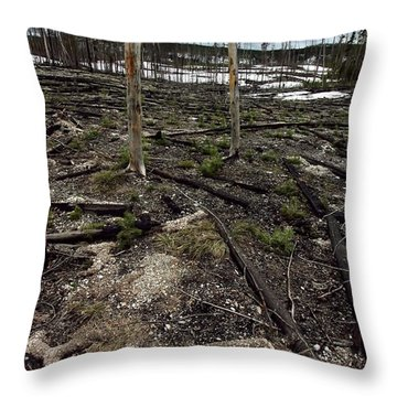 Throw Pillow featuring the photograph Wild Fire Aftermath by Amanda Stadther