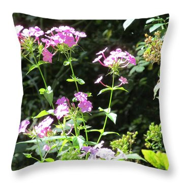 Throw Pillow featuring the photograph Wild Flower by Tina M Wenger