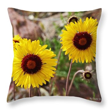 Wild Flowers Above The Rim Throw Pillow by Tom Janca