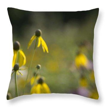 Wild Flowers Throw Pillow by Daniel Sheldon