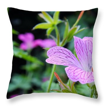 Throw Pillow featuring the photograph Wild Geranium Flowers by Clare Bevan