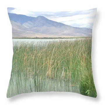Throw Pillow featuring the photograph Wild Grass by Marilyn Diaz
