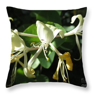 Wild Honeysuckle Throw Pillow