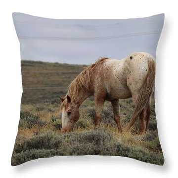 Throw Pillow featuring the photograph Wild Horse by Christy Pooschke