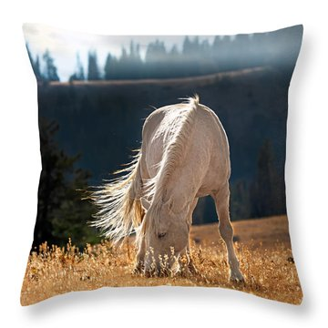 Wild Horse Cloud Throw Pillow