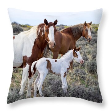 Wild Horse Family Portrait Throw Pillow