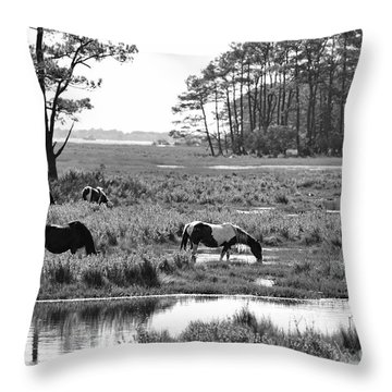 Wild Horses Of Assateague Feeding Throw Pillow by Dan Friend