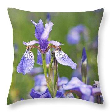 Wild Irises Throw Pillow