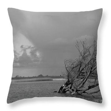 Wild Landscape Throw Pillow