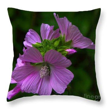 Wild Mallow - Malva Throw Pillow