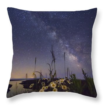 Wild Marguerites Under The Milky Way Throw Pillow