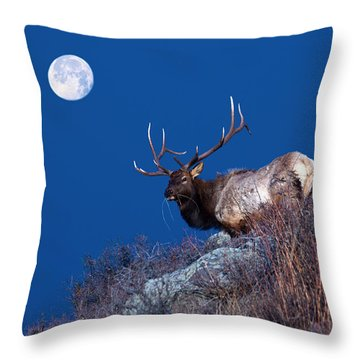 Wild Moon Throw Pillow
