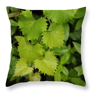 Throw Pillow featuring the photograph Wild Muscadine  Vine by Bradford Martin