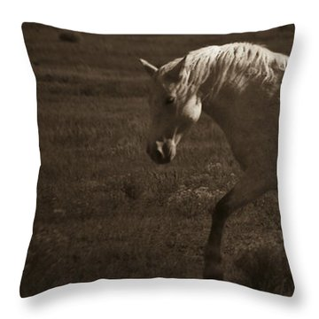 Wild Mustangs Of New Mexico 10 Throw Pillow