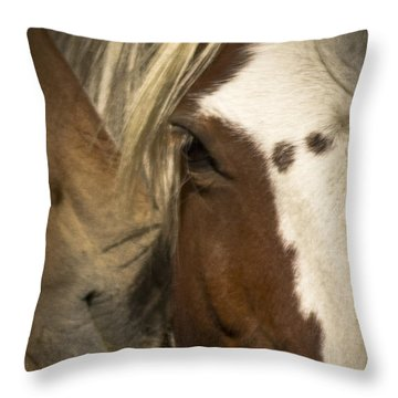 Wild Mustangs Of New Mexico 32 Throw Pillow
