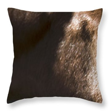 Wild Mustangs Of New Mexico 41  Throw Pillow