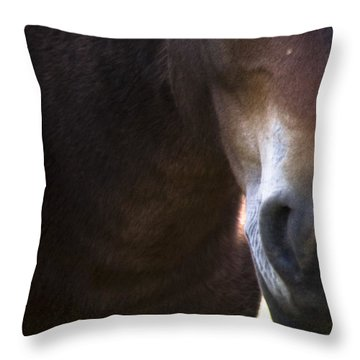 Wild Mustangs Of New Mexico 42 Throw Pillow