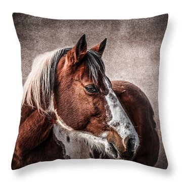 Wild One Throw Pillow by Doug Long