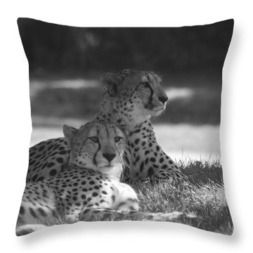 Wild Ones Throw Pillow
