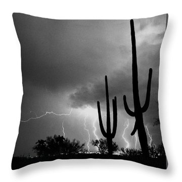 Throw Pillow featuring the photograph Wild Places by J L Woody Wooden