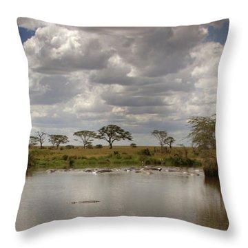 Wild Pond Throw Pillow by Joseph G Holland