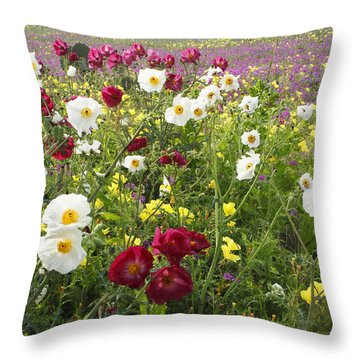 Wild Poppies South Texas Throw Pillow